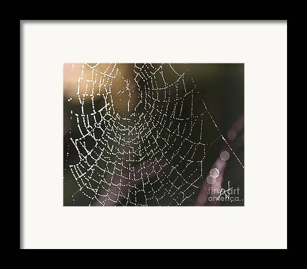 Spider Web Framed Print featuring the photograph Spiderweb Green by Artist and Photographer Laura Wrede