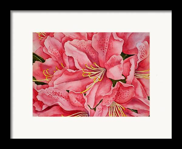 Watercolor Framed Print featuring the painting Spring Azalea by Darla Brock