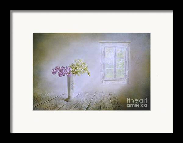 Art Framed Print featuring the photograph Spring Dream by Veikko Suikkanen