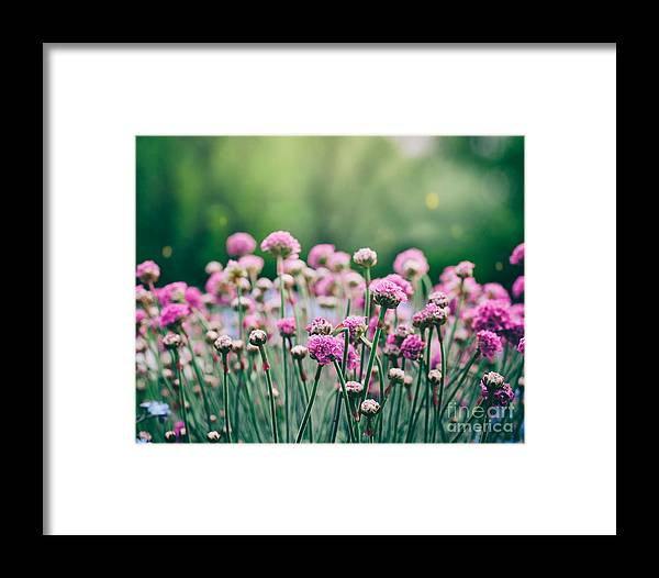 Abstract Framed Print featuring the photograph Spring Floral Background by Mythja Photography