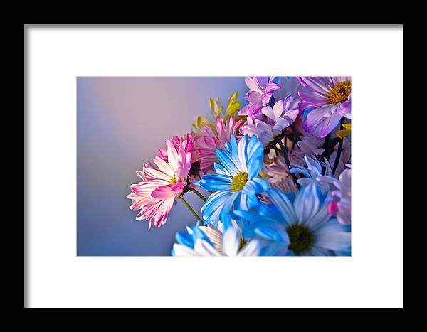 Flowers Framed Print featuring the photograph Spring Flowers by Pam Wolfe