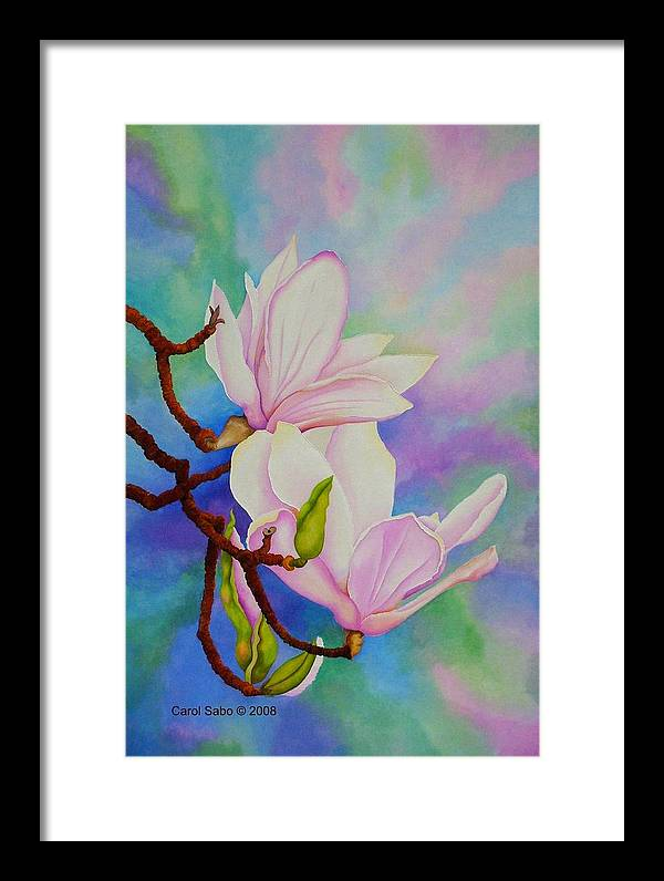 Pastels Framed Print featuring the painting Spring Magnolia by Carol Sabo