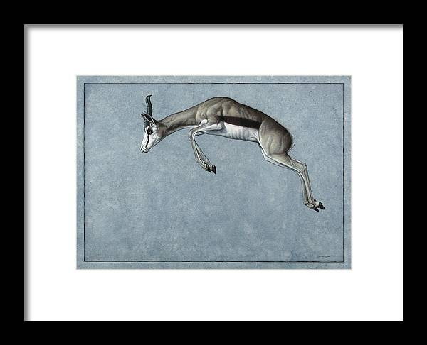 Springbok Framed Print featuring the painting Springbok by James W Johnson