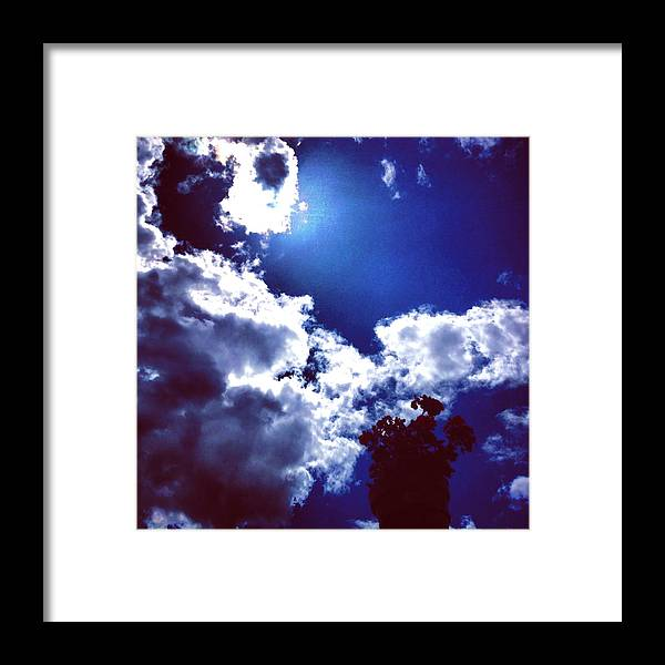 Spring Framed Print featuring the photograph Springtime Silhoutte by Hannah Rose