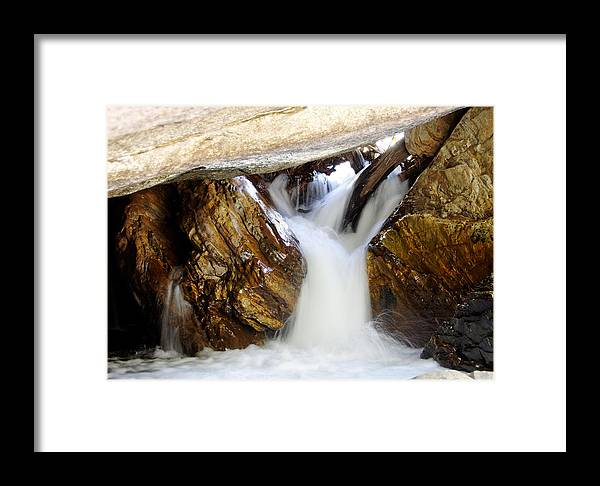 United States Framed Print featuring the photograph Spun Silk - Sequoia National Park by Darin Volpe
