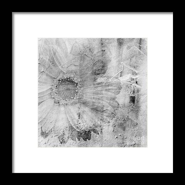 Square Framed Print featuring the photograph Square Series - Black White 5 by Andrea Anderegg