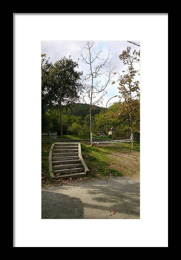 Stairs Framed Print featuring the photograph Stairs In The Park by Moshe Harboun