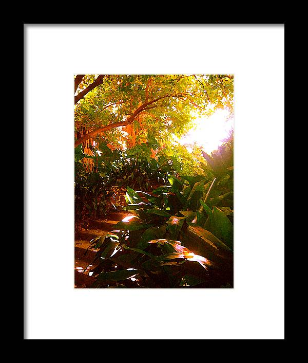 Landscapes Framed Print featuring the painting Stairway To The Top by Amy Vangsgard