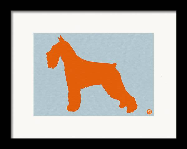 Standard Schnauzer Framed Print featuring the photograph Standard Schnauzer Orange by Naxart Studio