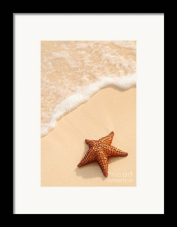 Starfish Framed Print featuring the photograph Starfish And Ocean Wave by Elena Elisseeva