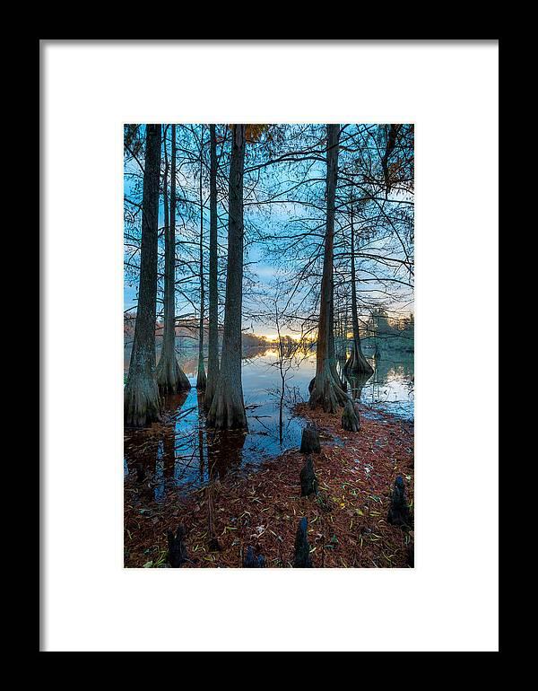 Steinhagen Reservoir Framed Print featuring the photograph Steinhagen Reservoir Vertical by David Morefield