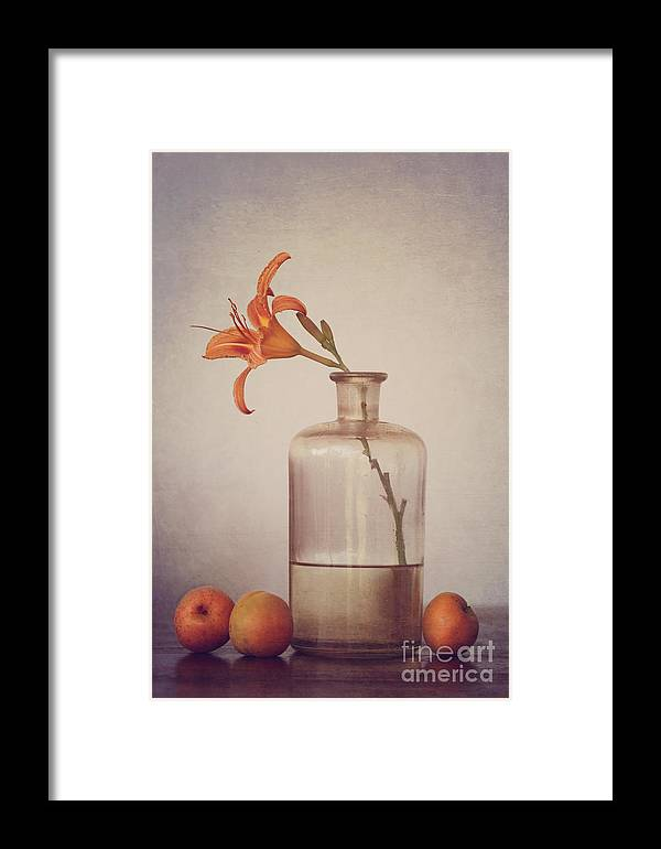 Still Life Framed Print featuring the photograph Still Life With Apricots by Diana Kraleva