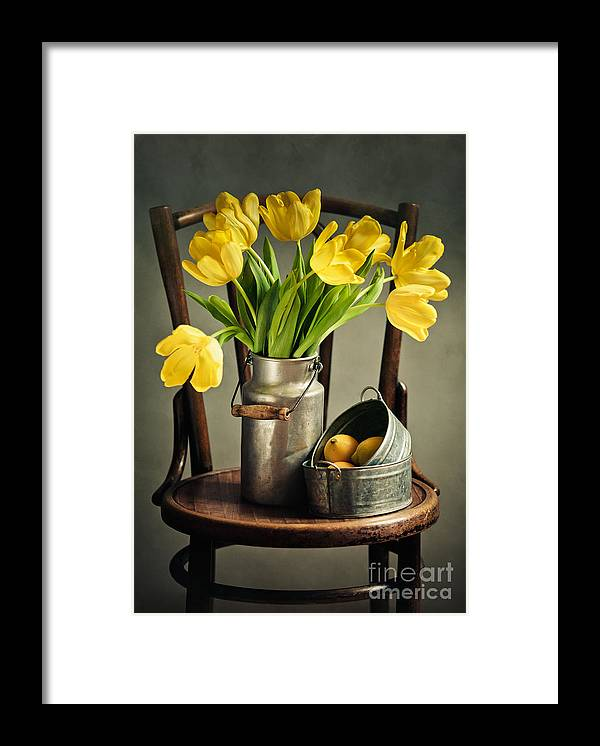 Tulip Framed Print featuring the photograph Still Life with Yellow Tulips by Nailia Schwarz