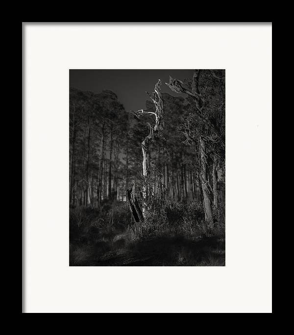 Black And White Framed Print featuring the photograph Still Standing by Mario Celzner