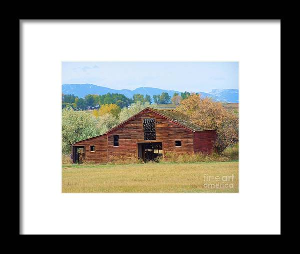 Barn Wood Landscape Trees  Framed Print featuring the mixed media Still Standing by Tammy McDougall
