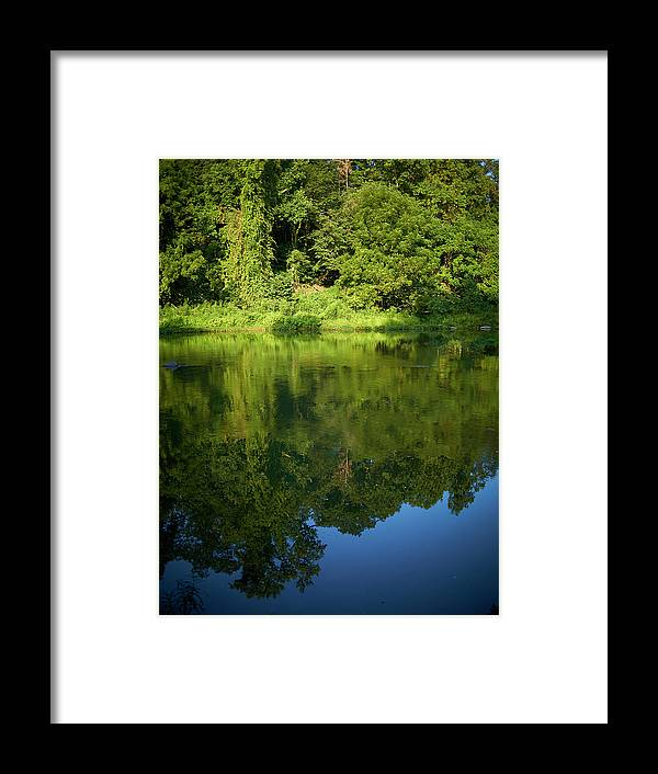 Tranquility Framed Print featuring the photograph Still Water On The Potomac River by Cameron Davidson