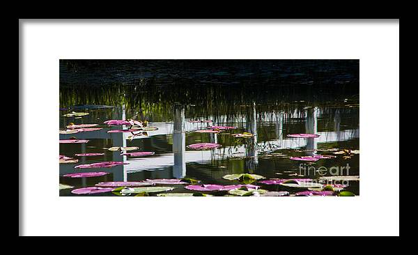Still Waters Framed Print featuring the photograph Still Waters by Mitch Shindelbower