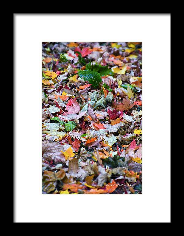 Orange Framed Print featuring the photograph Stir It Up by Thomas Woolworth