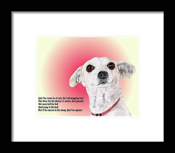 Dog Framed Print featuring the drawing Stitch - A Shelter Sweetie by Dave Anderson