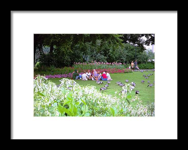 Sweden Framed Print featuring the photograph Stockholm Park by Ted Pollard