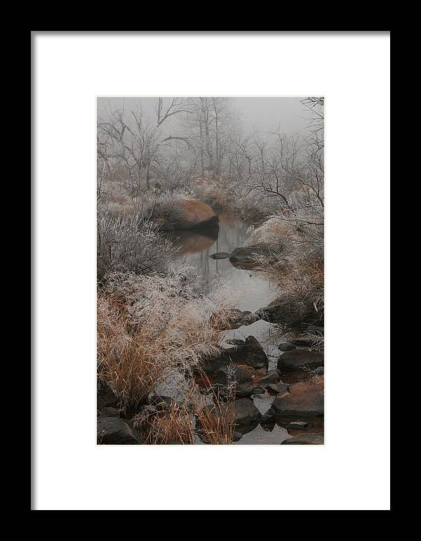 Trees Framed Print featuring the photograph Stoney Creek 1 by Rebecca Basden