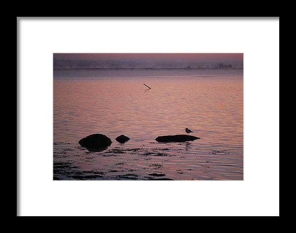 Stonington Harbor Framed Print featuring the photograph Stonington Sunrise by Amy Porter