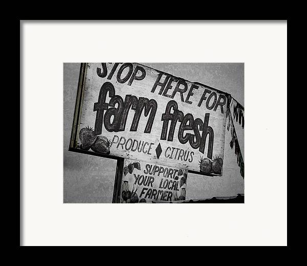 Florida Framed Print featuring the photograph Stop Here by Joan Carroll