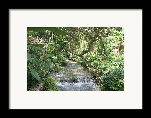 Landscape Framed Print featuring the photograph Stream Of Life by Dervent Wiltshire