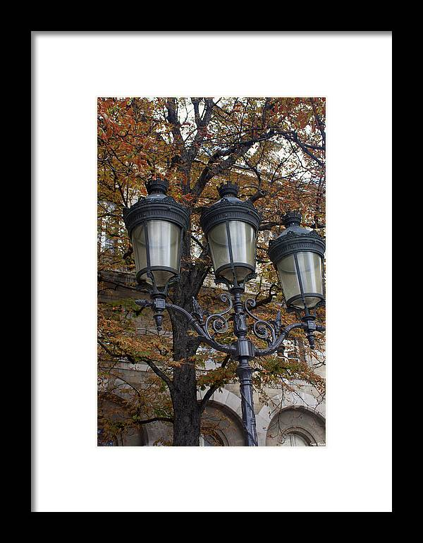Street Lamps Framed Print featuring the photograph Street Lamps by Ivete Basso Photography