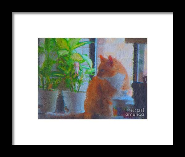 Cat Photography Framed Print featuring the digital art Suburban Jungle Cat by JoLen Confer