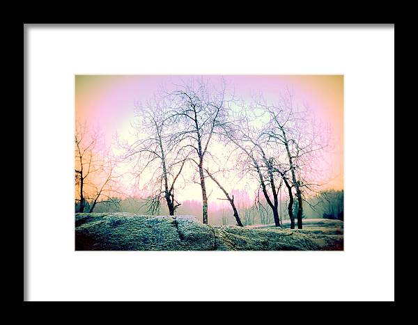 Nature Framed Print featuring the photograph It's Such A Cold World We Live In by Hilde Widerberg