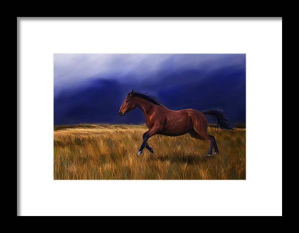 Horse Framed Print featuring the painting Galloping Horse Painting by Michelle Wrighton