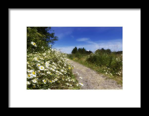 Country Paths Framed Print featuring the photograph Summer Memories by Wade Crutchfield