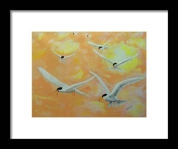 Birds Gulls Terns Sea Seascape Summer Acrylic Framed Print featuring the painting Summer Terns by Rich Mason