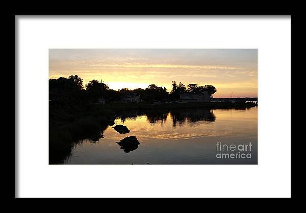 Sun Framed Print featuring the photograph Sun And Shadow by Sophia Marx