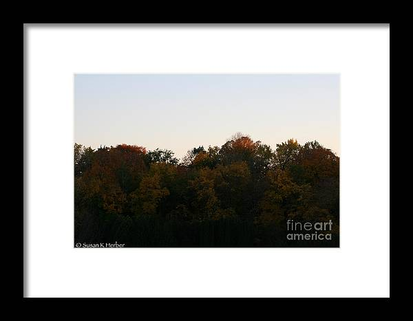 Flower Framed Print featuring the photograph Sun Soaked by Susan Herber