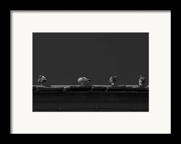 Black And White Framed Print featuring the photograph Sunday's Bath by Mario Celzner