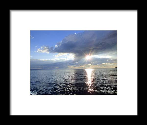 Lake Framed Print featuring the photograph Sunlight Reflections by Rennae Christman