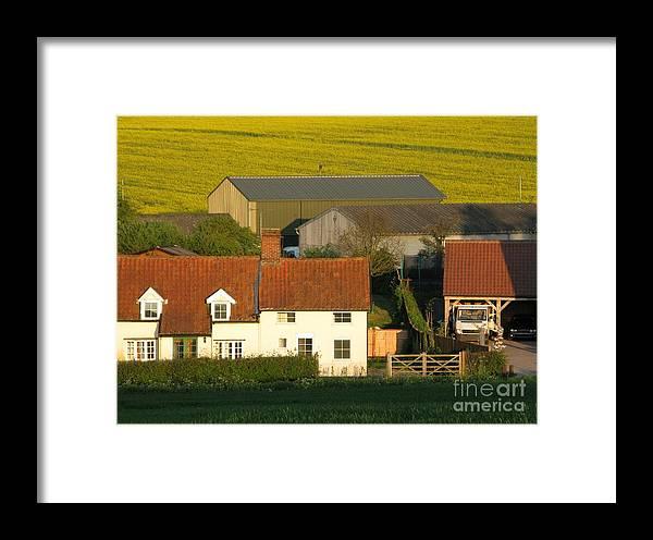 Farm Framed Print featuring the photograph Sunlit Farm by Ann Horn