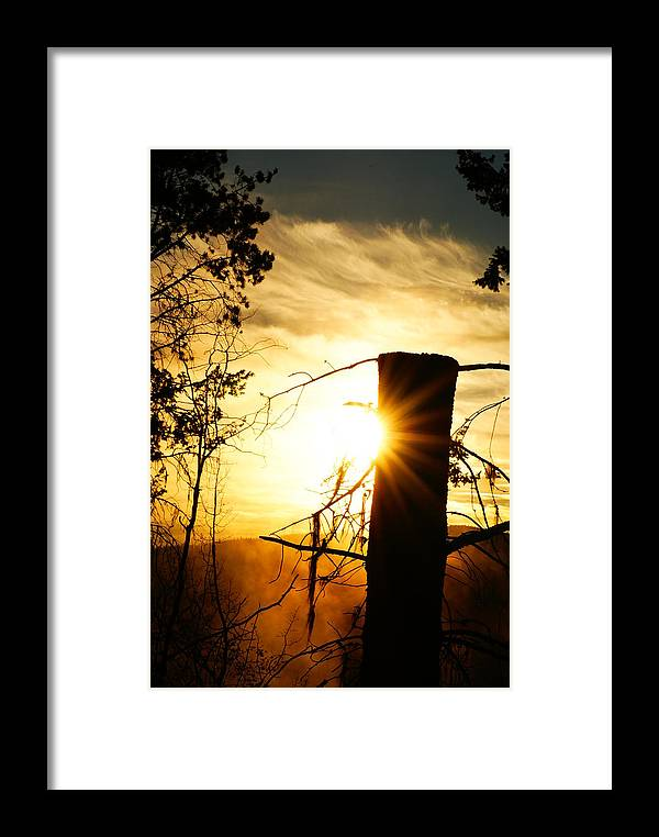 Sun Framed Print featuring the photograph Sunny Day by Lucas Greulich