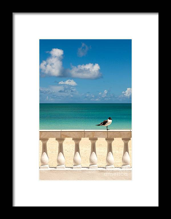 Clouds Framed Print featuring the photograph Sunny Tropical Seashore With Gull by Sarah Cheriton-Jones