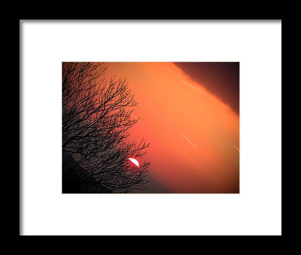 Ireland Framed Print featuring the photograph Sunrise And Hibernating Tree by James Truett
