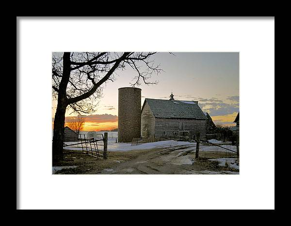 Rustic Framed Print featuring the photograph Sunrise On Birch by Bonfire Photography