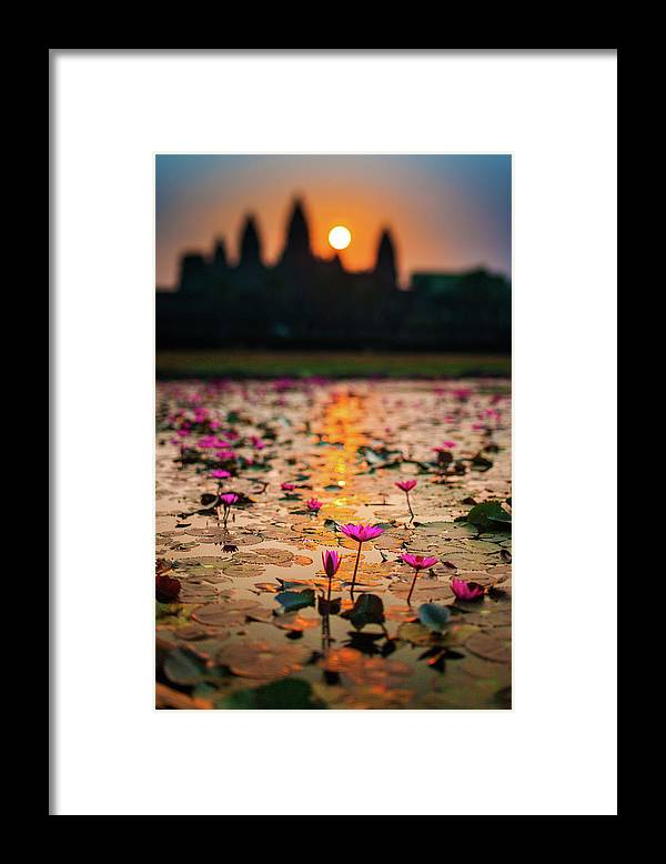 Tranquility Framed Print featuring the photograph Sunrise Over The Lotus Flowers Of by © Francois Marclay