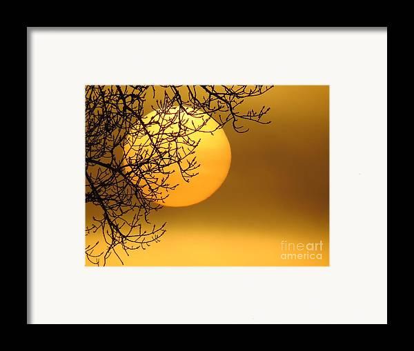 Sunrise Framed Print featuring the photograph Sunrise Through The Fog by David Lankton