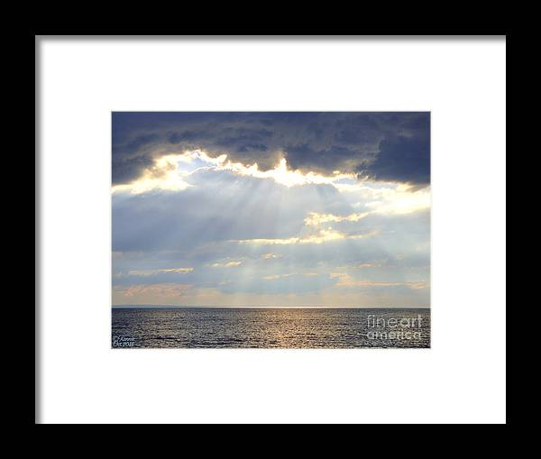 Nature Framed Print featuring the photograph Suns Rays by Rennae Christman