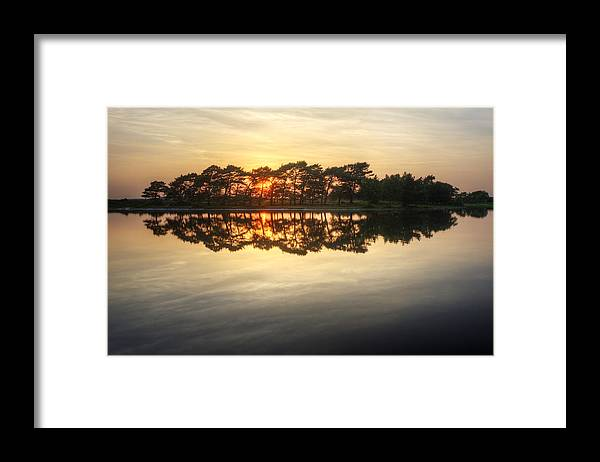 Landscape Framed Print featuring the photograph Sunset And Trees On Water by Matthew Gibson