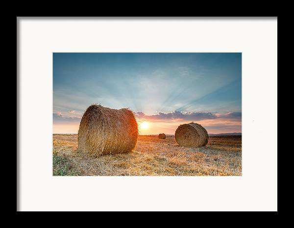 Bales Framed Print featuring the photograph Sunset Bales by Evgeni Dinev