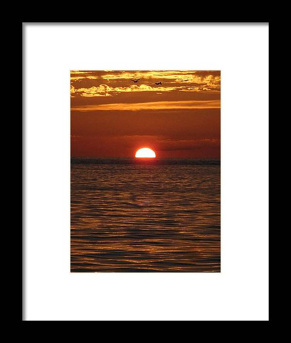 Sunset Framed Print featuring the photograph Sunset In The Sea by Robin Stout