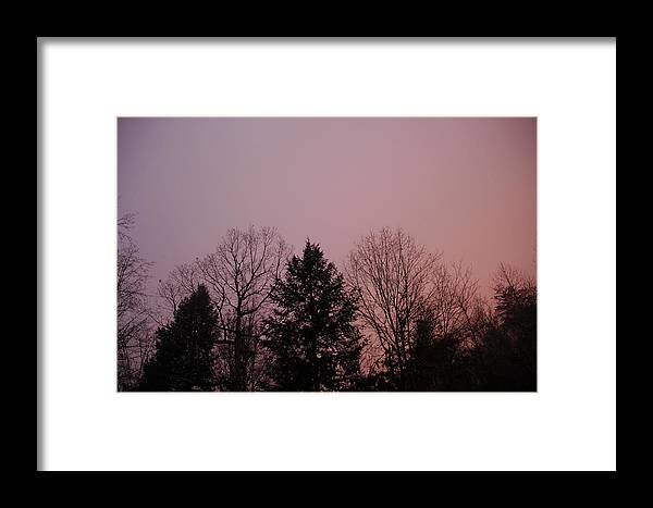 Sunset Framed Print featuring the photograph Sunset In The Woods by Meg Reinink